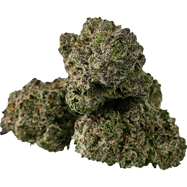 Gelato 33 marijuana bud