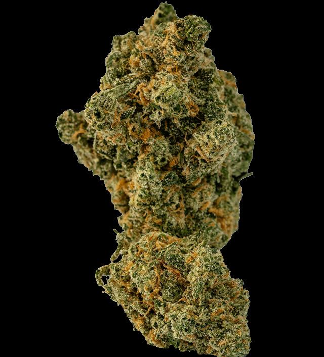 Mako Haze marijuana bud