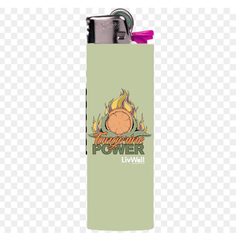 Lighter Bic Designs $1.99