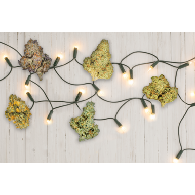 Best Marijuana Strains for the Holidays