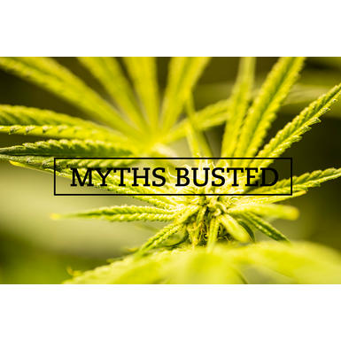 Top 5 Marijuana Myths