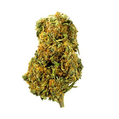 Good Medicine No1 Plat